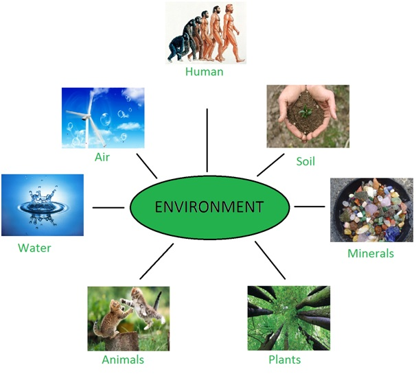 Environmental Health non preferred a level subjects